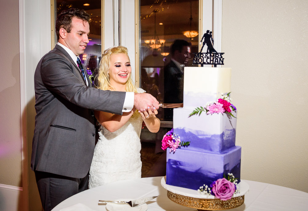 Bride and Groom cutting their wedding cake, Star Wars Wedding in Scenic Hills Country Club, Lazzat Photography