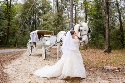 Bride standing with her horse and carriage, Coldwater Gardens, Rustic Fairy Tale Wedding, Lazzat Photography