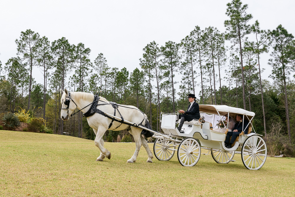 Bride and her dad riding in their horse and carriage, Coldwater Gardens, Rustic Fairy Tale Wedding, Lazzat Photography