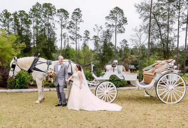 Bride and Groom looking at each other in front of their horse and carriage, Coldwater Gardens, Rustic Fairy Tale Wedding, Lazzat Photography