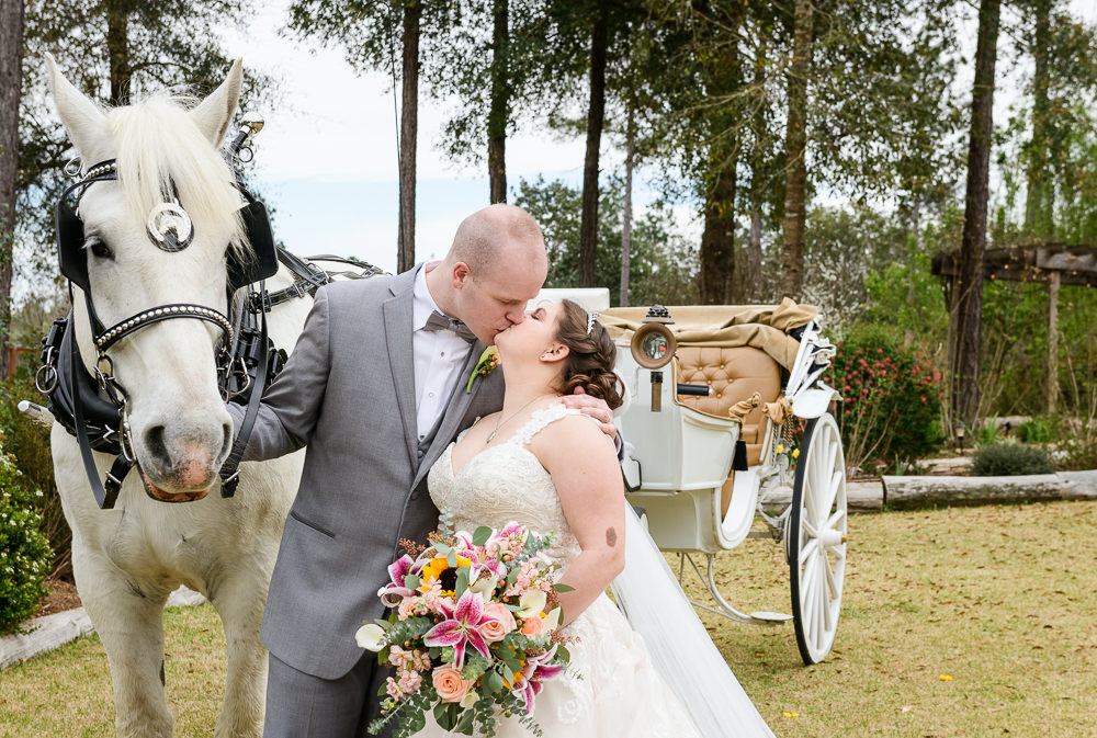 Bride and Groom kissing in front of their horse and carriage, Coldwater Gardens, Rustic Fairy Tale Wedding, Lazzat Photography
