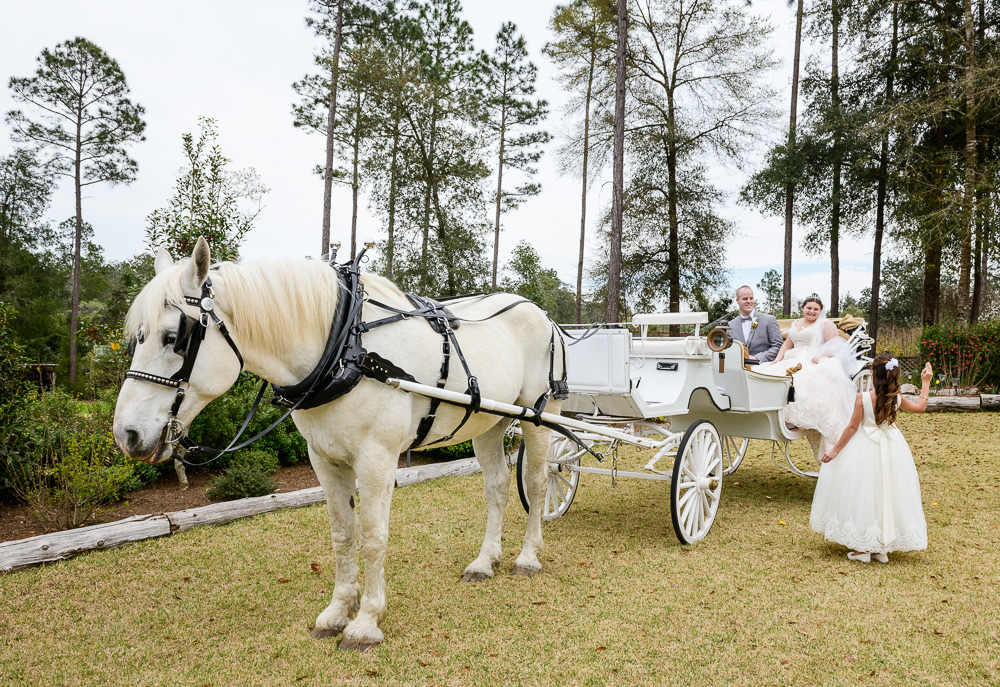 Bride and Groom's flower girl waving at them in their horse and carriage, Coldwater Gardens, Rustic Fairy Tale Wedding, Lazzat Photography