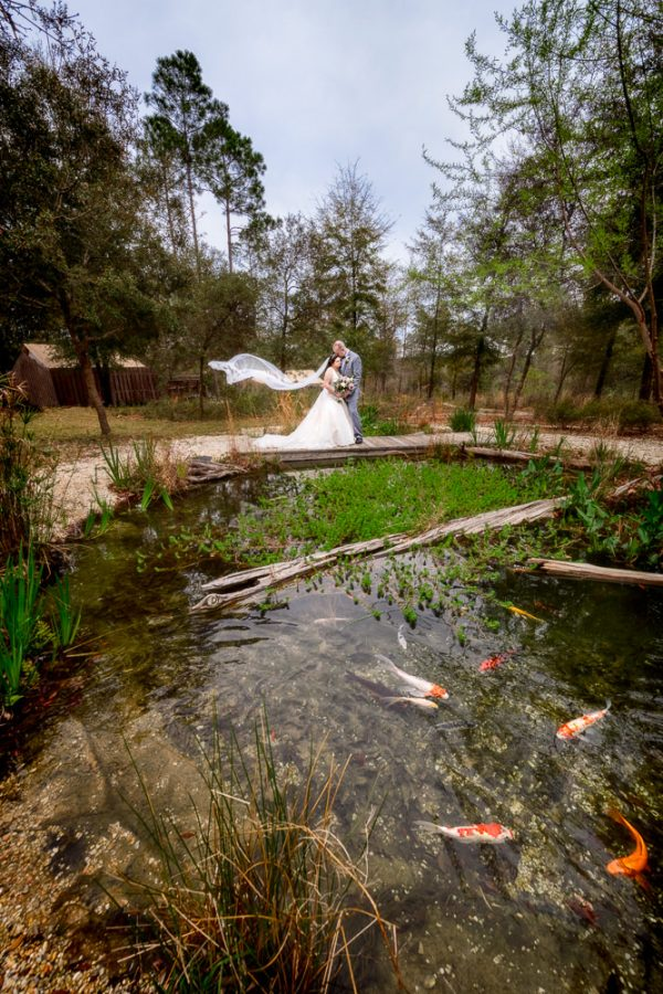 Bride and Groom on a bridge over the Koi pond with Emily's veil blowing in the wind, Coldwater Gardens, Rustic Fairy Tale Wedding, Lazzat Photography