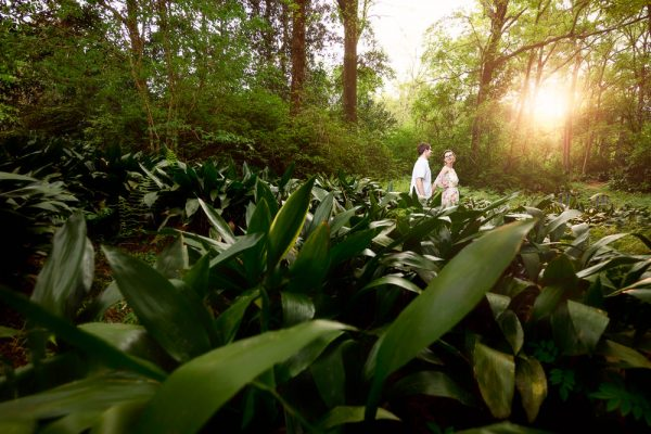 Woman leading her Fiance through a garden, Beautiful Mobile Botanical Gardens Engagement Session, Lazzat Photography