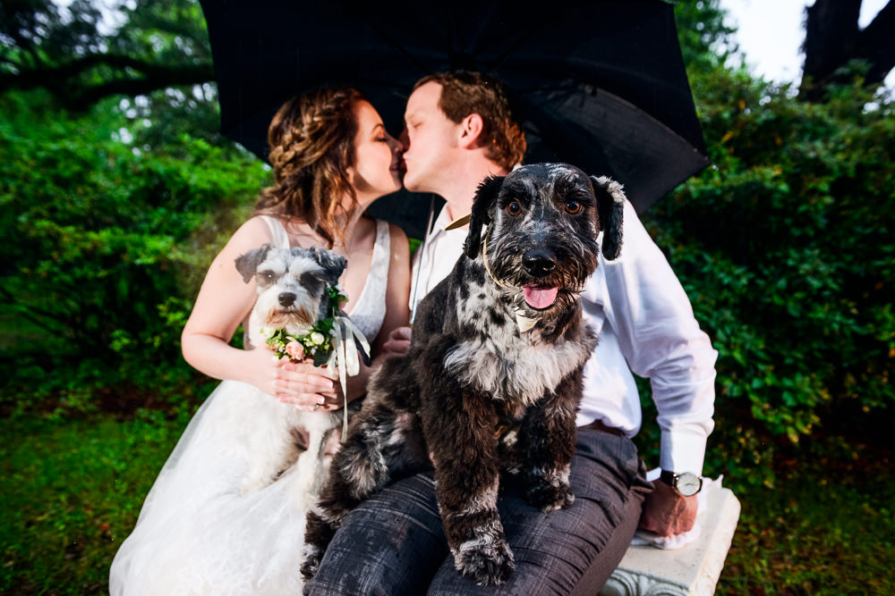 Couple kissing with their dogs on their laps, Fun Engagement Session at Eden Garden and Fort Pickens, Lazzat Photography, engagement photos